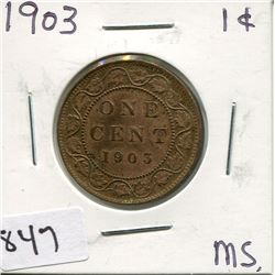 14903 CNDN LARGE PENNY