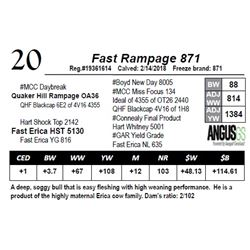 Fast Rampage 871