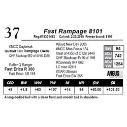 Fast Rampage 8101
