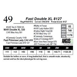 Fast Double XL 8127