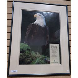 LARGE WHISTLER CORRIDOR EAGLE PRINT