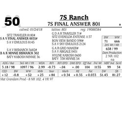 7S Final Answer 801