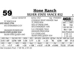 Silver State Vance 852