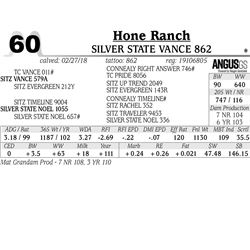 Silver State Vance 862