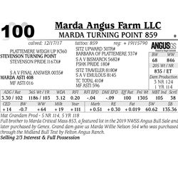 Marda Turning Point 859