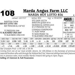 Marda Hot Lotto 856