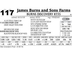 Burns Discovery 8335