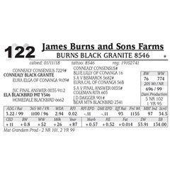 Burns Black Granite 8546