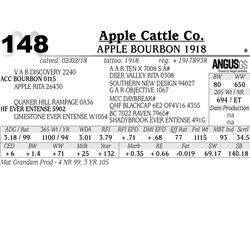 APPLE Bourbon 1918