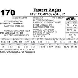 Fast Compass 631-812