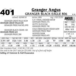 Granger Black Eagle 806