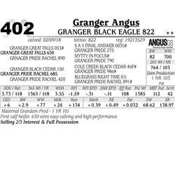 Granger Black Eagle 822