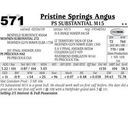 PS Substantial M15