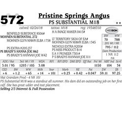 PS Substantial M18