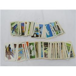 LOT OF COLLECTOR WILDLIFE CARDS ( BROOKE BOND) *OVER 100-VINTAGE*