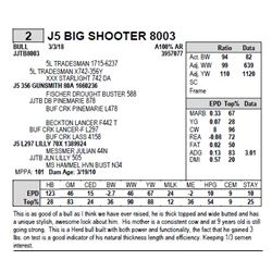 J5 BIG SHOOTER 8003