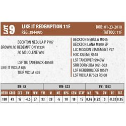 LIKE IT REDEMPTION 11F