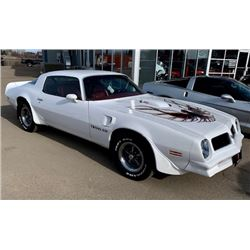 FRIDAY NIGHT 1976 PONTIAC TRANS AM 400 4 SPEED 34079 ORIGINAL MILES