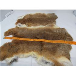 LOT OF 2 RABBIT PELTS (BROWN ) *18-19 INCHES LONG*