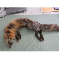 LADIES STOLE (RED FOX FUR)