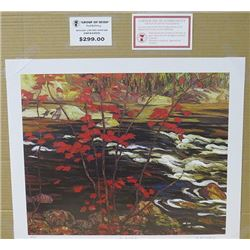 LIMITED EDITION PRINT  (THE RED MAPLE, BY AY JACKSON)  *20 INCHES TALL BY 24 INCHES WIDE*
