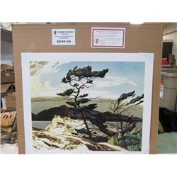 LIMITED EDITION PRINT (WHITE PINE,  BY A.J CASSON) *20 INCHES TALL BY 24 INCHES WIDE*