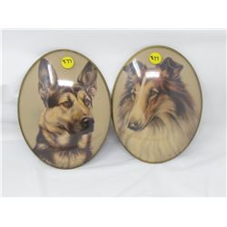 LOT OF 2 DOG PICTURES  (OVAL SHAPED WITH CONCAVE PLASTIC SURFACE) *8 INCHES HIGH*