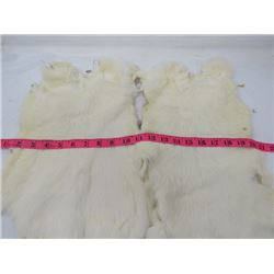 2 JUMBO WHITE  RABBIT PELTS