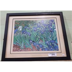 FRAMED PRINT OF IRIS'S