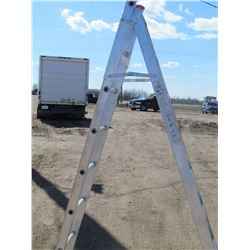 EXTENSION LADDER (12')