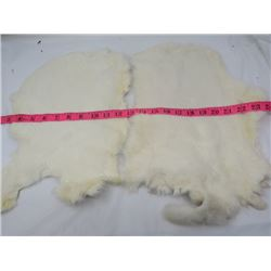 2 WHITE RABBIT FURS