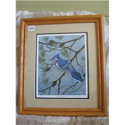 FRAMED LIMITED EDITION PRINT (DAVE HIEBERT) *BLUEJAY AND JACKPINE #131*