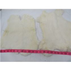 2 WHITE RABBIT FUR PELTS