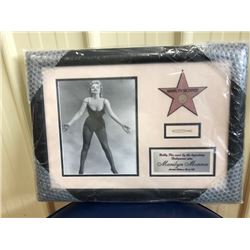FRAMED PHOTO OF MARILYN MONROE INCLUDING A BOBBY PIN PERSONALLY OWNED AND WORN BY THE LEGENDARY HOLL