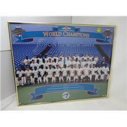 PICTURE (FRAMED) *BACK TO BACK WORLD CHAMPIONS TORONTO BLUE JAYS* (1992 & 1993 WORLD SERIES)