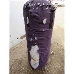 PUNCHING BAG (DAMAGED)