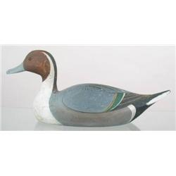 Pintail drake by James Curtis Rousell b. 1911, Ch