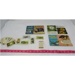 LOT OF 40+ TEA CARDS AND 3 OF THE STICKER BOOKS THAT GO WITH THE CARDS