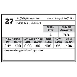 Lot 27 - Suffolk/Hamp