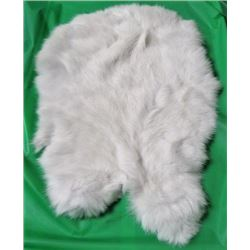 RABBIT PELT (WHITE) *16 INCHES LONG X 13 INCHES WIDE*
