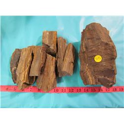 LOT OF PETRIFIED WOOD PIECES