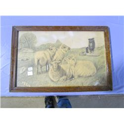 """PICTURE AND FRAME (1924-SHEEP AND DOG) *13"""" X 20""""*"""