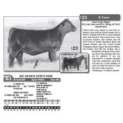 Lot - 23 - JLF QUEEN LEXUS 9202