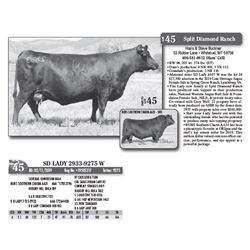 Lot - 45 - SD LADY 2933-9275 W