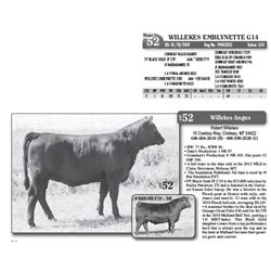 Lot - 52 - WILLEKES EMBLYNETTE G14
