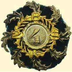 POLAND, MEDAL, 4TH REGIMENT OF THE 2ND CARPATHIAN RIFLE BATTALION (!? / BRIGADE?)