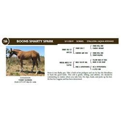 BOONS SMARTY SPARK