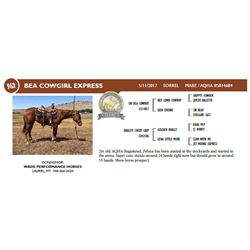 BEA COWGIRL EXPRESS