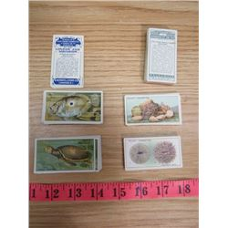 LOT OF CIGARETTE CARDS