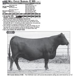 Lot - 12 - Mill Coulee Barbara K 905 [ DDF ]